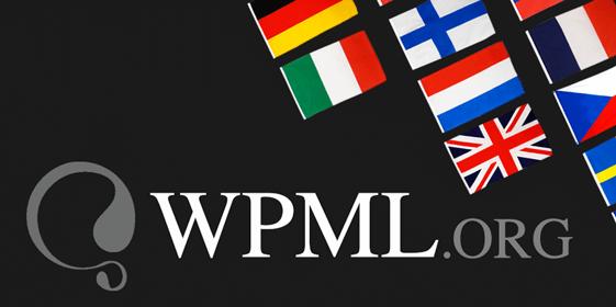 wordpress agentur frasche wpml