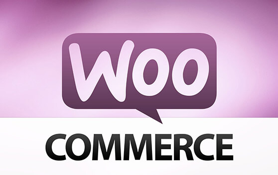 wordpress agentur FRASCHE.de Shopsystem woo-commerce